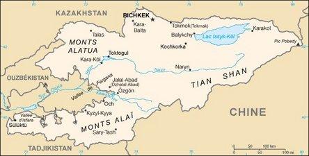 65 morts dans le crash d'un avion kirghiz