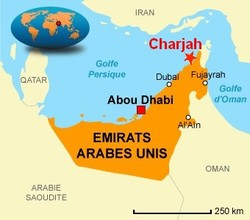 Six morts dans le crash d'un avion soudanais aux Emirats arabes