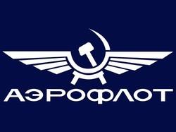Le pilote d'Aeroflot célébré en héros dans la blogosphère russe