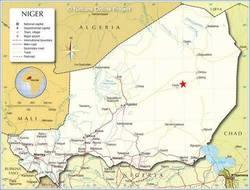 Niger : 6 morts, 4 Chinois et 2 Français, dans le crash d'un avion