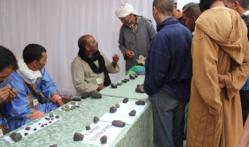 Maroc: Première expo-bourse aux Météorites à M'Hamid El Ghizlane