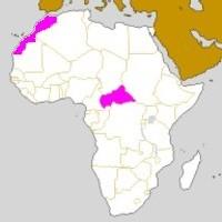 Centre Afrique