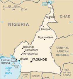 Le Cameroun met à niveau l'aéroport Maroua Salak pour en faire un aéroport international