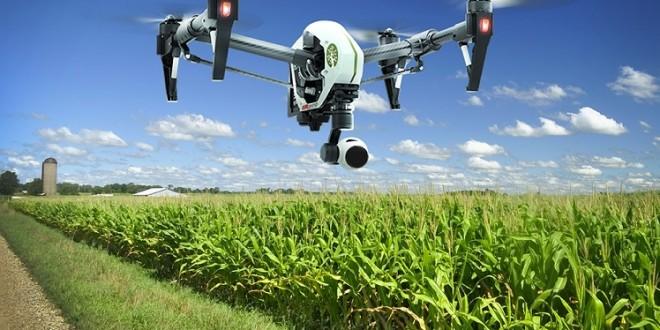MAMDA: Evaluation des sinistres agricoles