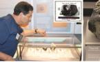Emission d'un timbre-poste à l'effigie d'une météorite marocaine