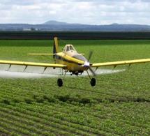 Tunisie: Crash d'un avion d'épandage agricole