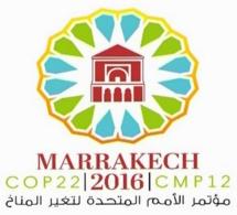 Royal Air Maroc désignée transporteur Officiel Exclusif de la COP22